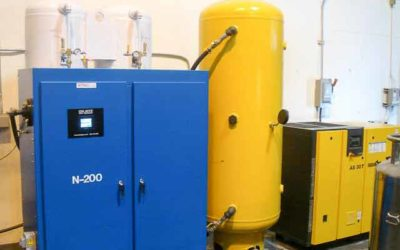 Nitrogen Generator for cheese Packaging and dairy